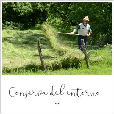 Conservación del entorno